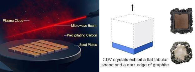 cvd growth process diagram